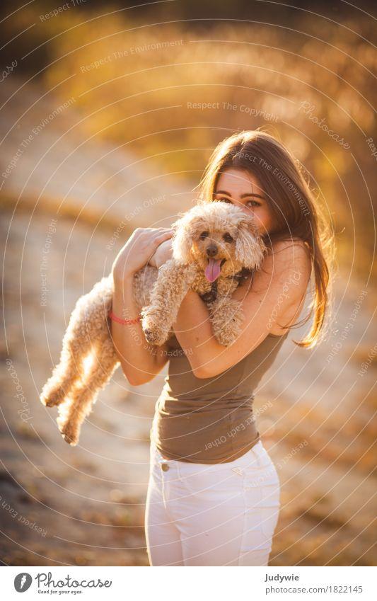 (K)ein Kuscheltier Mensch Hund Jugendliche Sommer Junge Frau Sonne Tier Freude 18-30 Jahre Erwachsene Umwelt Herbst feminin Glück Zusammensein Freundschaft