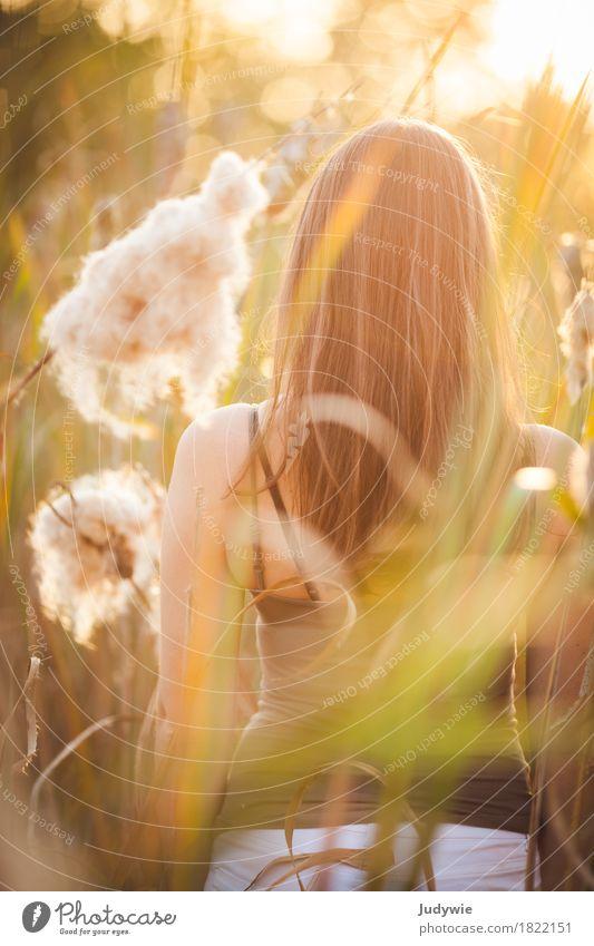 Versteck im Schilf Mensch Frau Natur Jugendliche Sommer schön Junge Frau Sonne ruhig 18-30 Jahre Erwachsene Umwelt Herbst natürlich Küste feminin