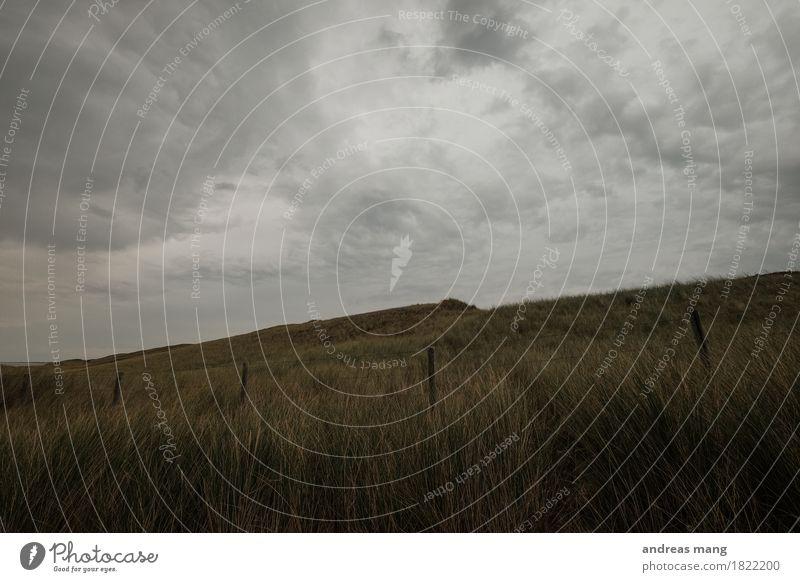 #321 / Unwetter Umwelt Natur Landschaft Himmel Wolken Herbst Gras Hügel Küste Nordsee Düne Stranddüne dunkel kalt trist Angst gefährlich Verzweiflung Einsamkeit