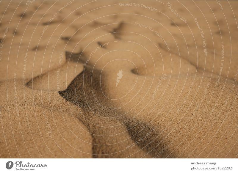 #328 / Miniatur Erholung ruhig Ferien & Urlaub & Reisen Tourismus Abenteuer Ferne Sommer Sommerurlaub Strand Meer Umwelt Sand Hügel ästhetisch heiß trocken gold