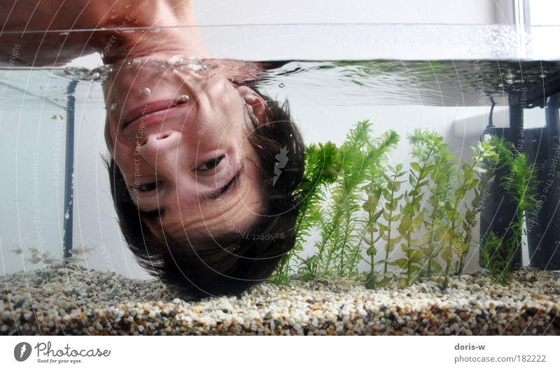 abgetaucht Mann Jugendliche blau Wasser grün Freude Gesicht Erwachsene kalt Kopf Haare & Frisuren lachen Stein Stil Luft lustig