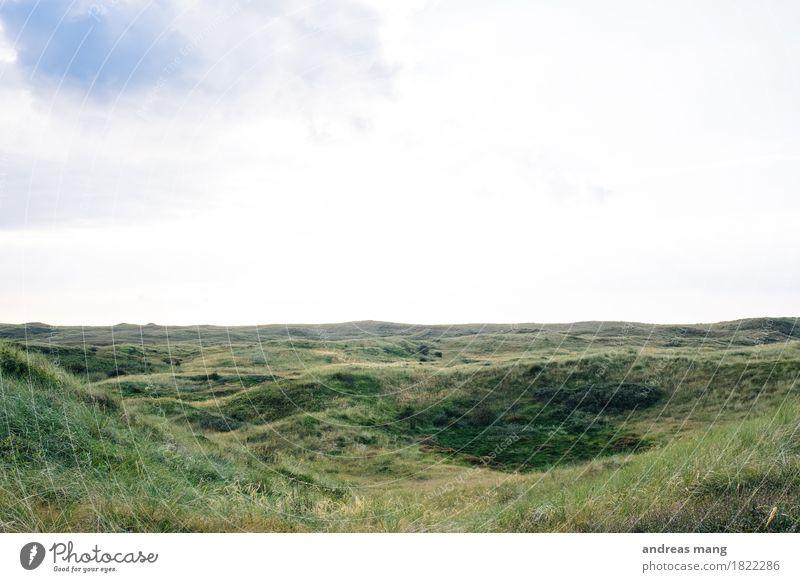 #322 / Naturschutzgebiet Himmel Ferien & Urlaub & Reisen grün Landschaft Ferne Umwelt Herbst Gras Freiheit Horizont Ausflug Schönes Wetter Wandel & Veränderung