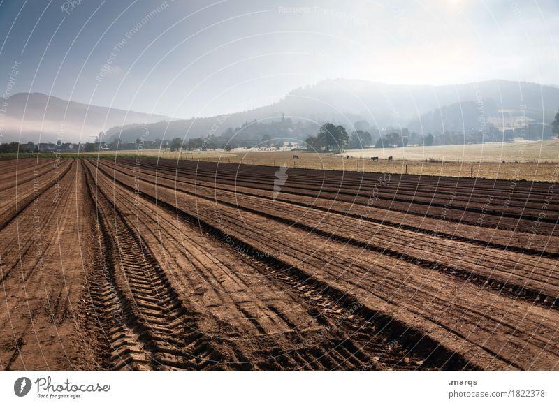 Acker Natur Landschaft Berge u. Gebirge Herbst Nebel Erde Feld Schönes Wetter Urelemente Landwirtschaft Wolkenloser Himmel nachhaltig Forstwirtschaft