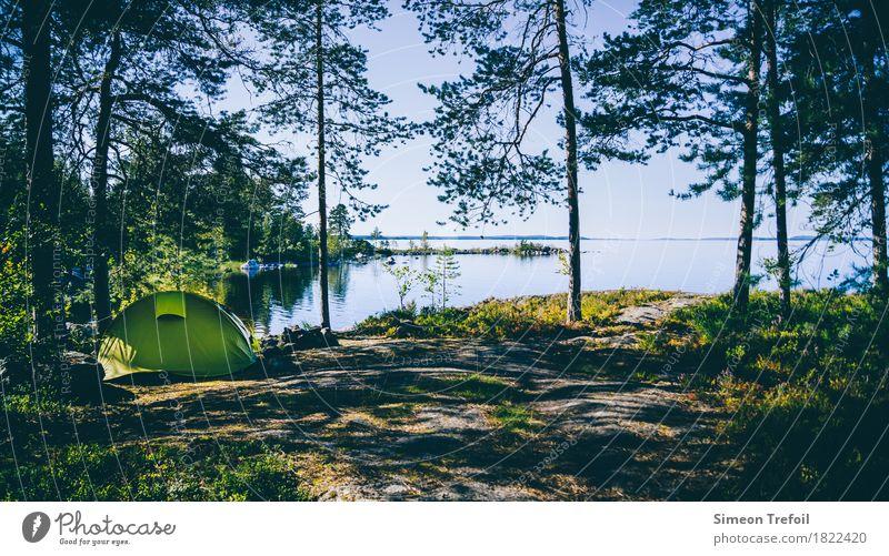 Zelt am Pielinen-See Ferien & Urlaub & Reisen Sommer Landschaft Einsamkeit ruhig Ferne Wald Freiheit Tourismus Horizont wandern einzigartig Abenteuer Sicherheit