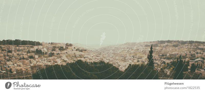 Jerusalem Ferien & Urlaub & Reisen Tourismus Ausflug Ferne Umwelt Natur Landschaft Himmel Klima Hügel Israel Ost-Jerusalem heilig Tempelberg Ölberg Farbfoto