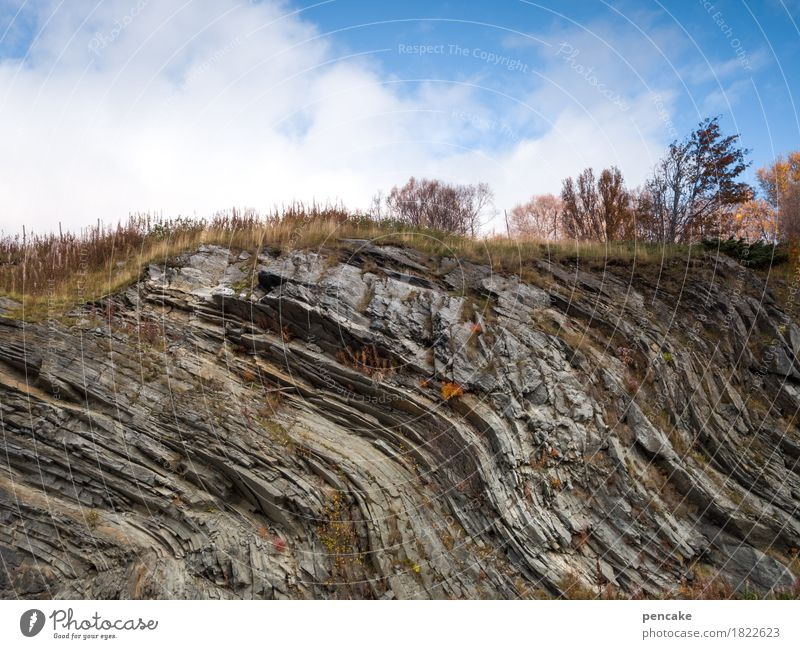 im meer der zeit Natur Landschaft Urelemente Herbst Felsen ästhetisch Norwegen Wellenform Steinzeit Geologie Strukturen & Formen Bewegung Urzeit Meer Zeit