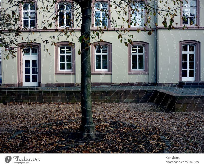 oktober. Städtereise Haus Traumhaus Garten Wissenschaften Schulgebäude Schulhof Gartenarbeit Kunst Kultur Opernhaus Herbst Baum Park Burg oder Schloss Mauer