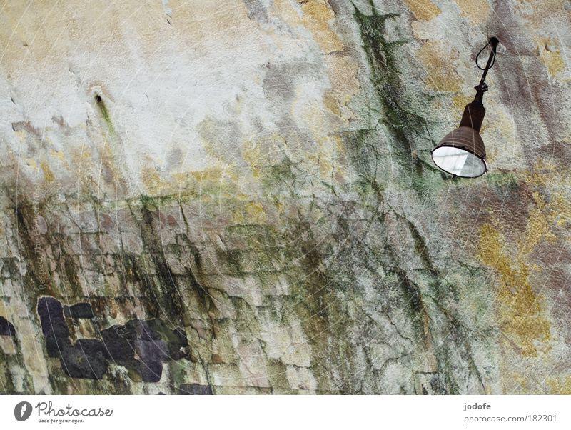 es werde Licht Natur alt grün Pflanze Wand grau Stein Mauer Gebäude Wetter trist Schwimmbad Bauwerk historisch Ruine schäbig