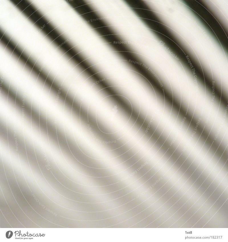 zebra weiß schwarz Lampe abstrakt Neonlicht Muster Leuchtstoffröhre Leuchtkörper Neonlampe