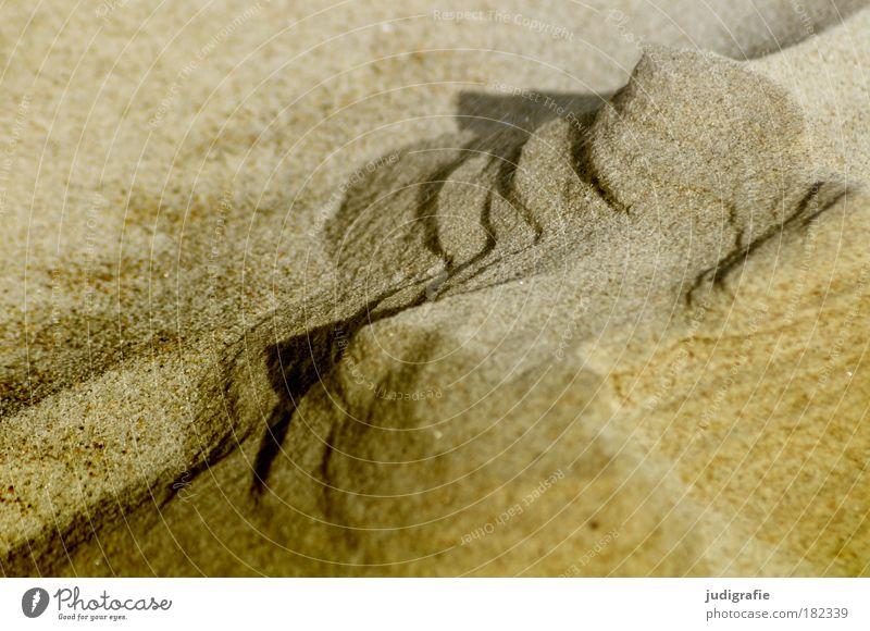 Strandformen Farbfoto Außenaufnahme Tag Natur Landschaft Sand Felsen Berge u. Gebirge Küste Ostsee natürlich Wärme bizarr Umwelt Vergänglichkeit