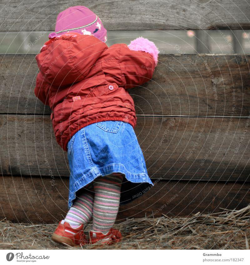 Neugier Farbfoto mehrfarbig Außenaufnahme Textfreiraum rechts Mensch Kleinkind Mädchen Kindheit 1 1-3 Jahre Dorf Jacke Strumpfhose Mütze Blick niedlich