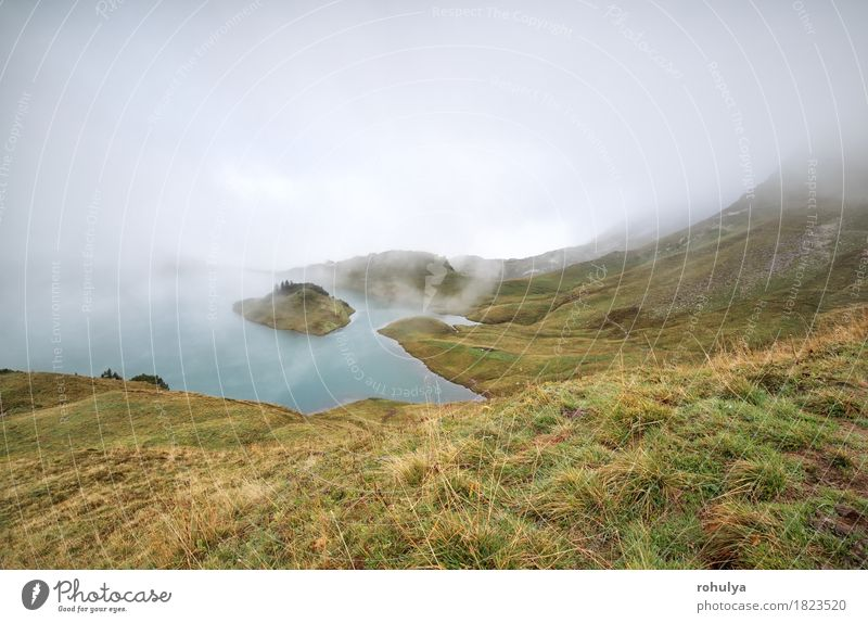 Alpensee im dichten Nebel, Bayern, Deutschland Ferien & Urlaub & Reisen Abenteuer Expedition Berge u. Gebirge Natur Landschaft Wetter Gras Wiese Hügel Felsen