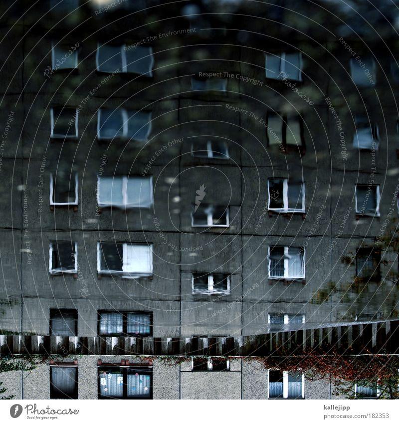 plattfisch Wasser Haus Leben Wand Fenster Traurigkeit Mauer Gebäude Regen Architektur Wohnung Beton Hochhaus Fassade Häusliches Leben