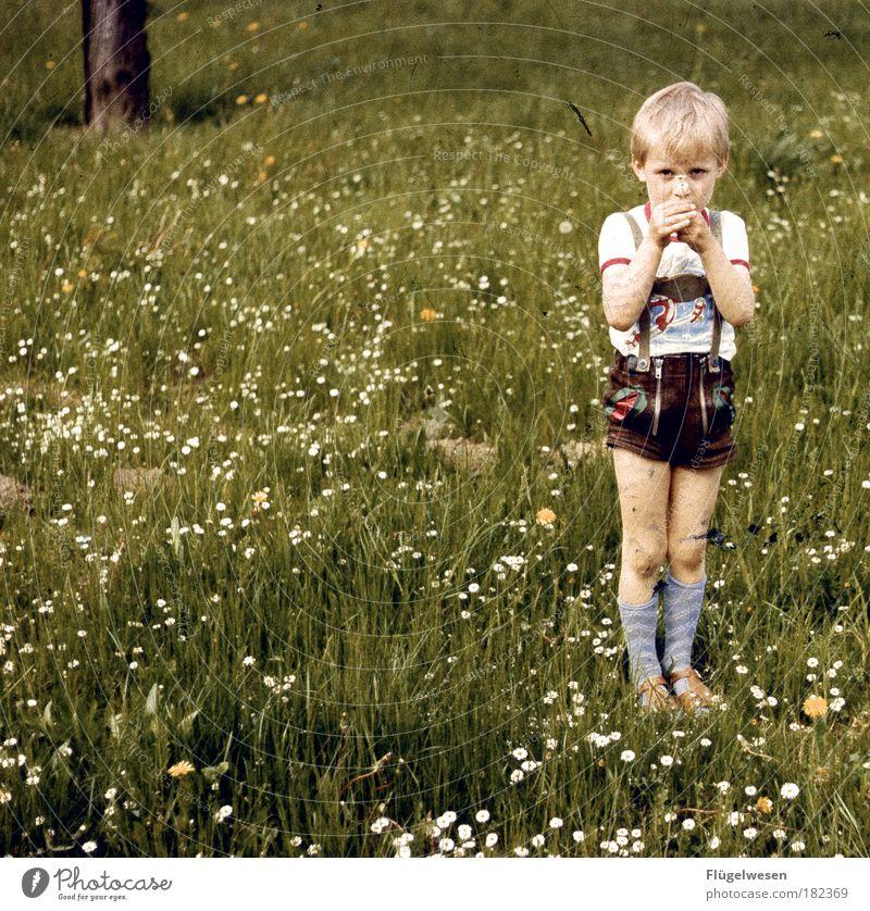 Der Tag an dem die Wiese stillstand Mensch Kind Blume Pflanze Sommer Freude Junge Gras Glück Erinnerung blond Lifestyle Coolness T-Shirt Freizeit & Hobby