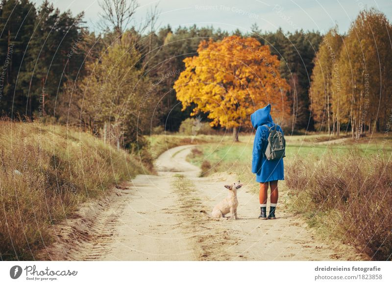 Herbstspaziergang - Freunde für's Leben - Indian Summer Feeling feminin Frau Erwachsene Haustier Hund stehen Einigkeit entdecken Ausflug Freiheit Landschaft