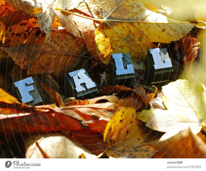 Down. Natur Pflanze Blatt Umwelt Landschaft gelb Herbst Kunst braun Erde Schriftzeichen ästhetisch Boden Buchstaben fallen Jahreszeiten