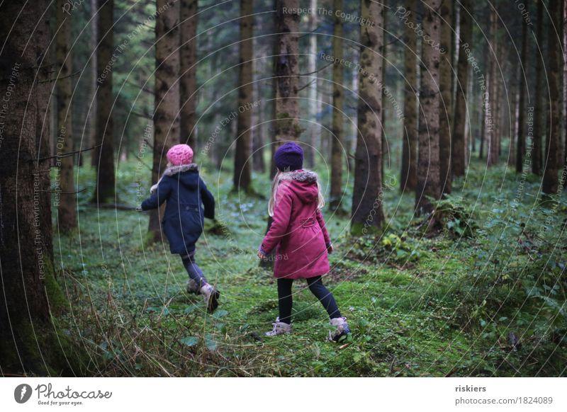 im wald zu hause Mensch feminin Kind Mädchen Geschwister Schwester Kindheit 2 3-8 Jahre Umwelt Natur Landschaft Herbst Wald entdecken Erholung rennen Spielen