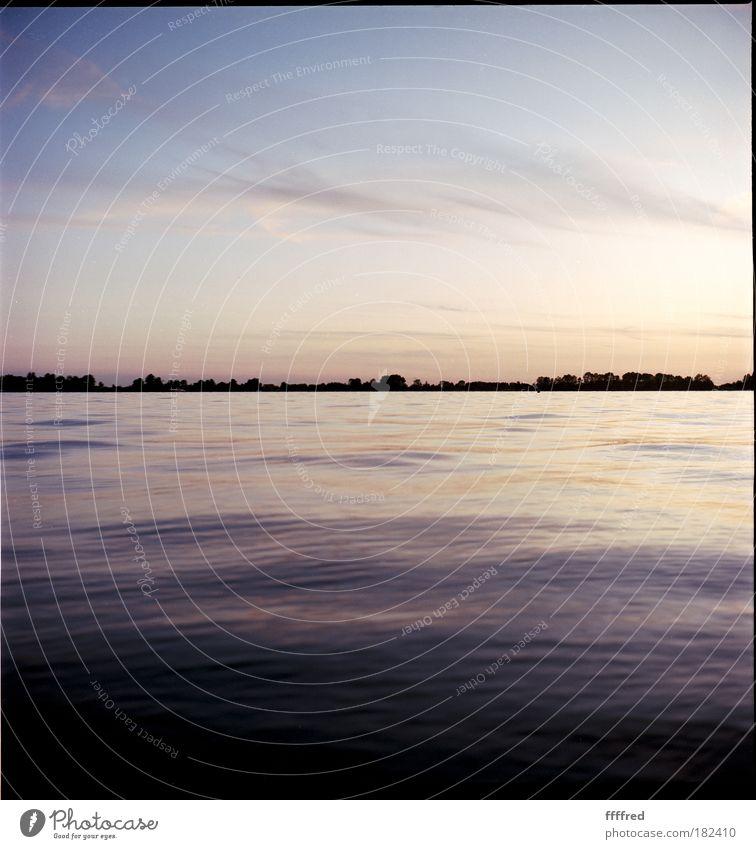 sunset hollandaise Natur Wasser Himmel Baum Meer Sommer Ferien & Urlaub & Reisen ruhig Wolken Ferne Erholung Freiheit See Landschaft Wellen Küste