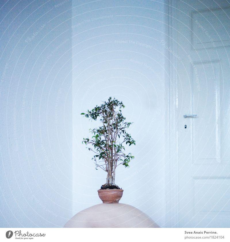 Baum des Lebens. Mensch Pflanze Einsamkeit Kunst Tür Rücken skurril Zimmerpflanze
