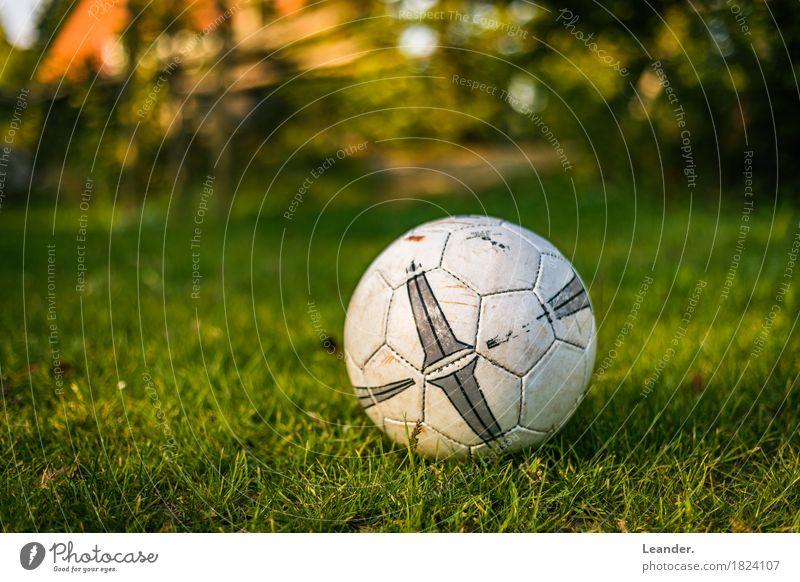 Fußball im Garten grün gelb Sport Gras Spielen orange liegen Abenteuer Fitness Rasen sportlich Ball Sport-Training