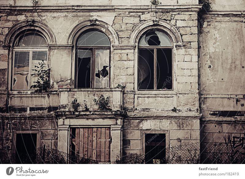 Museumsreif alt ruhig Haus Fenster Wand Mauer braun Tür kaputt trist bedrohlich retro Vergänglichkeit gruselig Dresden