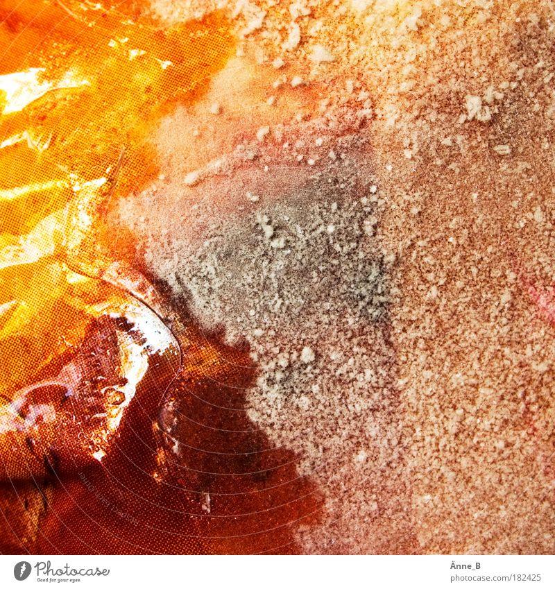 Hahn im Herbst weiß rot Winter gelb kalt Eis gold Frost Fleisch frieren Ernährung Kunststoffverpackung Nutztier Tier Billig