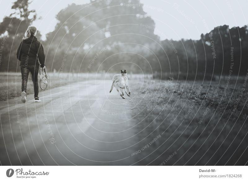 Tierliebe Mensch Frau Hund Natur Jugendliche Junge Frau Landschaft Freude Erwachsene Umwelt Leben Wiese Herbst feminin Gesundheit