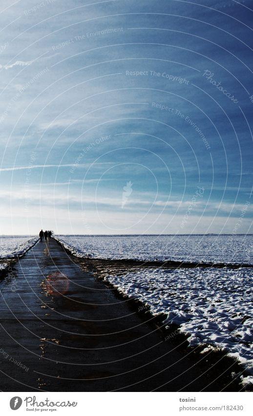 weites Feld Mensch Himmel weiß blau Wolken Winter Ferne Schnee Menschengruppe Wege & Pfade gehen Horizont Ausflug laufen Spaziergang