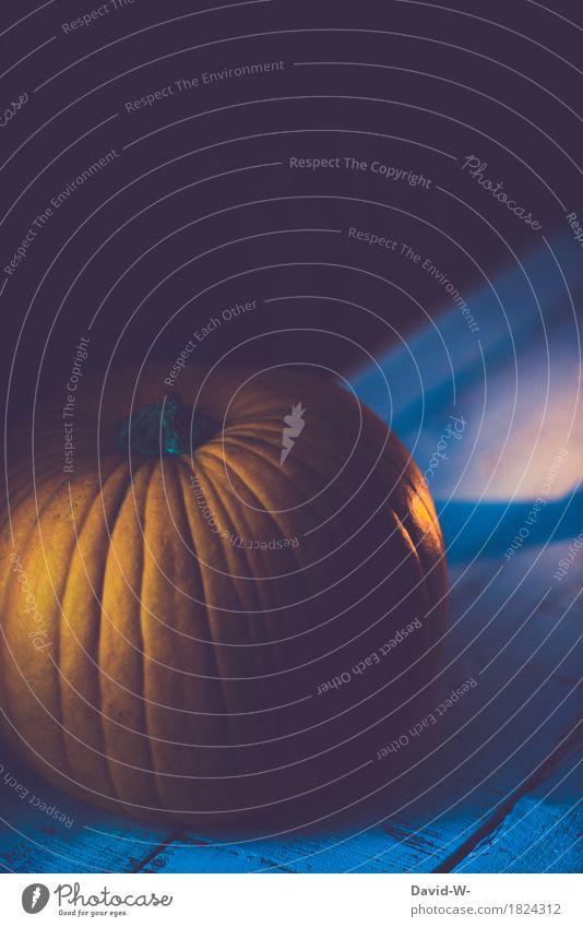 Kürbis zu Halloween Lebensmittel Gemüse ruhig Dekoration & Verzierung Nachtleben Umwelt Natur Herbst leuchten dunkel schön orange träumen grauenvoll gruselig