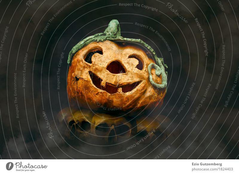 Halloween Kürbis mit Spinne auf Totenköpfe Design Mensch Kopf Aggression Ekel Fröhlichkeit gruselig gelb Gefühle Angst Entsetzen Todesangst Hintergrundbild