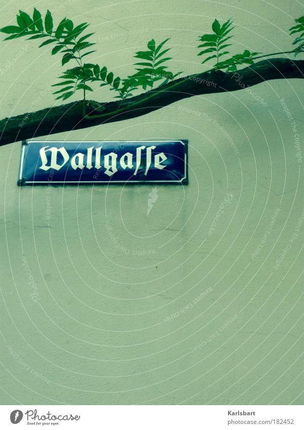 wallgasse. button. Wallgasse Wien Straßennamenschild Emaille Emailleschild historisch Nostalgie Wand Textfreiraum unten Ast Gasse Frakturschrift Wort