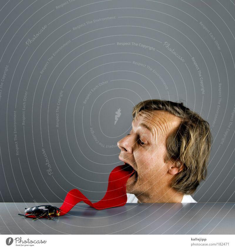 drei, Mensch Mann Tier Porträt Erwachsene Gesicht Haare & Frisuren Kopf Reflexion & Spiegelung Essen Lebensmittel Mund Nase Ernährung Ohr Lippen