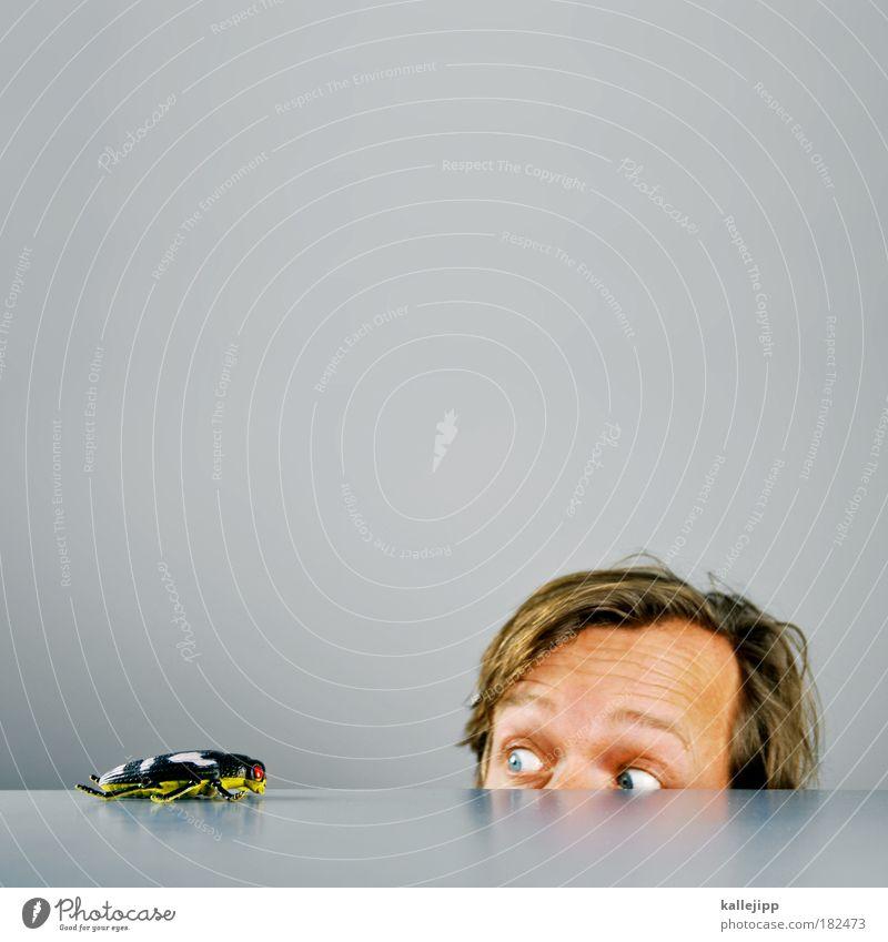 eins, Mensch Mann Erwachsene Gesicht Auge Leben Haare & Frisuren Kopf Angst Lebensmittel Haut Ernährung Blick Insekt Appetit & Hunger Restaurant