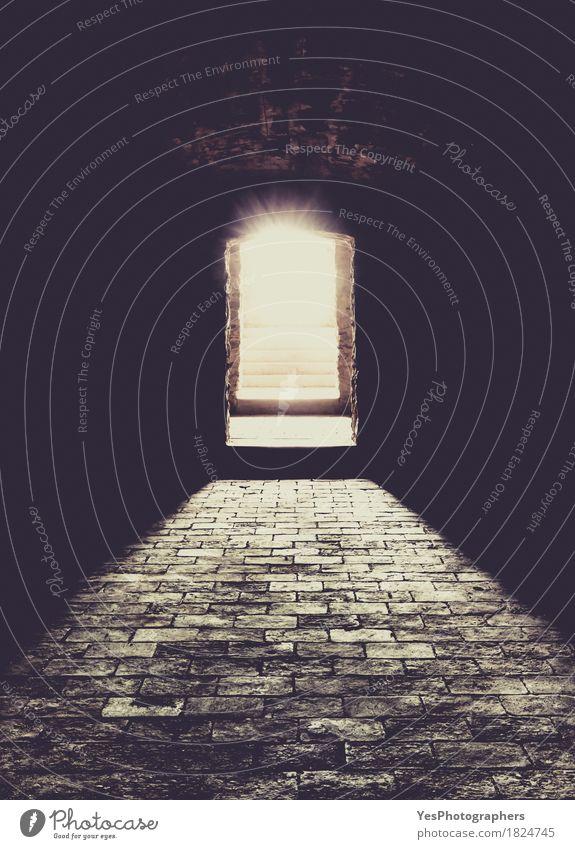 Kellerinnenraum und Eingang Design Halloween Jahrmarkt Stein Ornament alt dunkel Erfolg gruselig hell historisch schwarz Stimmung Hoffnung Angst Entsetzen