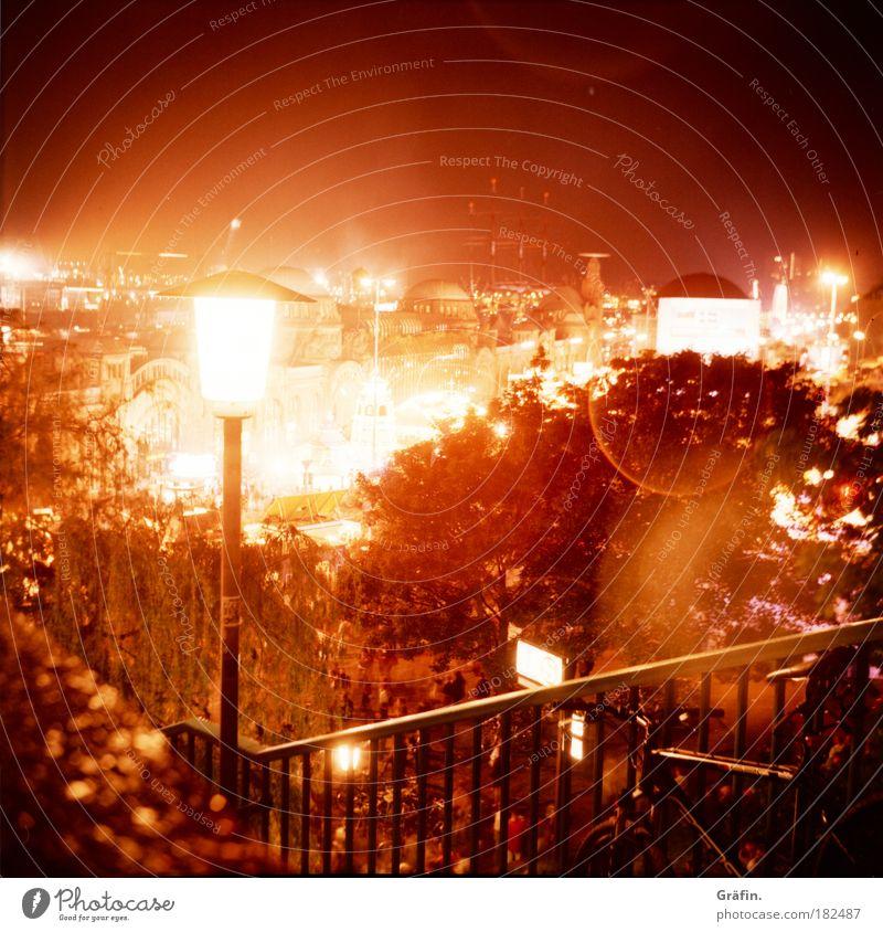Tränen in den Augen Baum Nacht Lomografie Stadt gelb Straße Langzeitbelichtung braun Beleuchtung glänzend gold Hamburg Ausflug Tourismus Aussicht Hafen