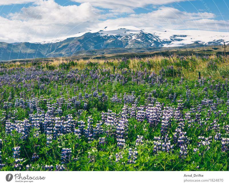 Island - Mýrdalsjökull Himmel Natur Ferien & Urlaub & Reisen Pflanze Sommer Landschaft Wolken Ferne Berge u. Gebirge Frühling Wiese Freiheit Tourismus Wetter