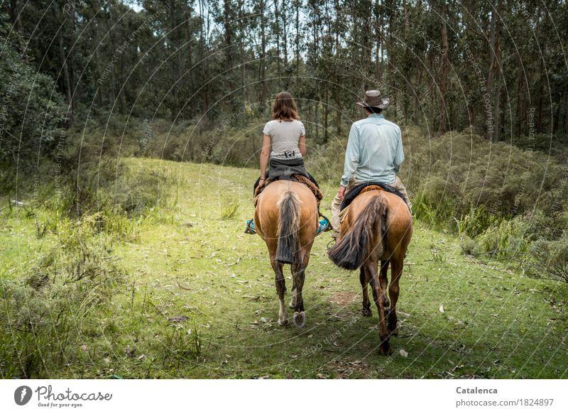 zamm(auf)gebrochen | auf neuen Wegen Reiten maskulin feminin Junge Frau Jugendliche Junger Mann 2 Mensch Landschaft Sommer Wald Pferd Gras Streucher Sträucher
