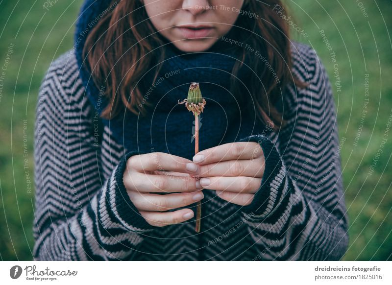 Erwachen. Leben. Freude. Natur Jugendliche Pflanze Junge Frau Blume Einsamkeit Blüte Liebe Herbst feminin Beginn beobachten Vergänglichkeit Freundlichkeit