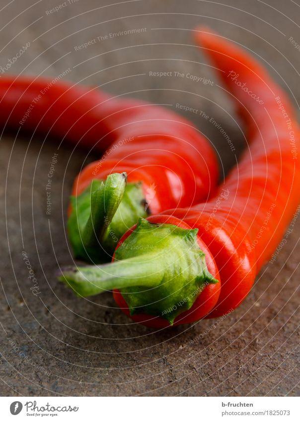 Chilischoten Holz exotisch frech frisch Gesundheit rot Schote Scharfer Geschmack Küche Schneidebrett Paprika Pfefferoni Gemüse Kräuter & Gewürze Würzig Farbfoto
