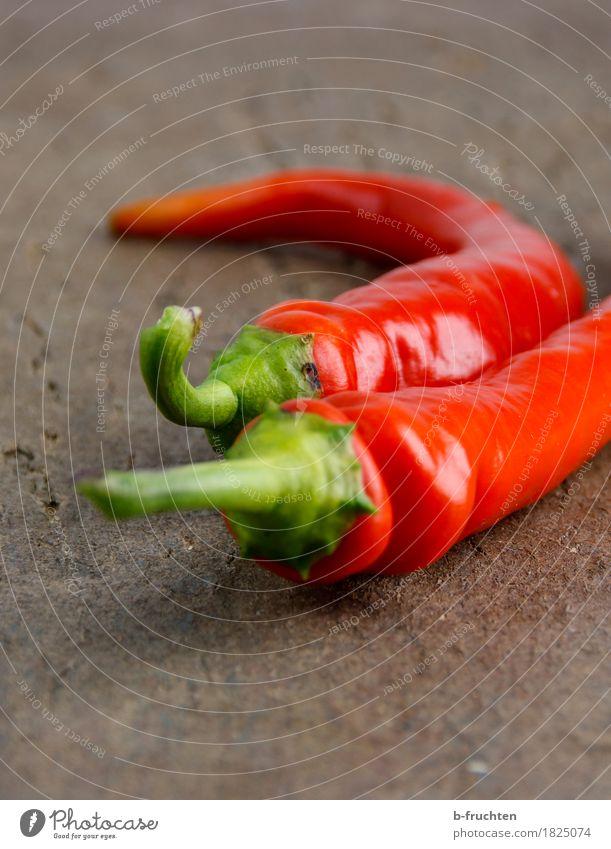 scharfes Paar Gemüse Tisch Essen genießen rot Zusammenhalt Chili Paprika feurig Scharfer Geschmack paarweise Holz Ernte Peperoni Würzig Peperoncini Pfefferoni