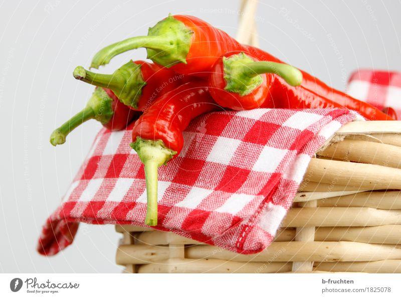 Scharfe Ernte Lebensmittel Gemüse Kräuter & Gewürze frisch Gesundheit natürlich rot Qualität Chili Chiliernte Scharfer Geschmack Schote Serviette kariert Würzig