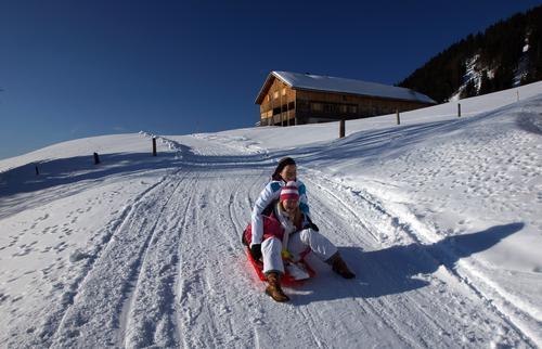 Rodelpartie Natur Ferien & Urlaub & Reisen Landschaft Freude Winter Berge u. Gebirge Straße kalt Wege & Pfade Sport Schnee Tourismus Ausflug Wintersport