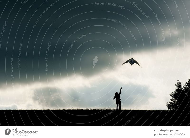Herbstvergnügen Mensch Himmel Freude Ferne dunkel Wiese Park Horizont Wind Freizeit & Hobby fliegen Elektrizität bedrohlich Unendlichkeit Sturm