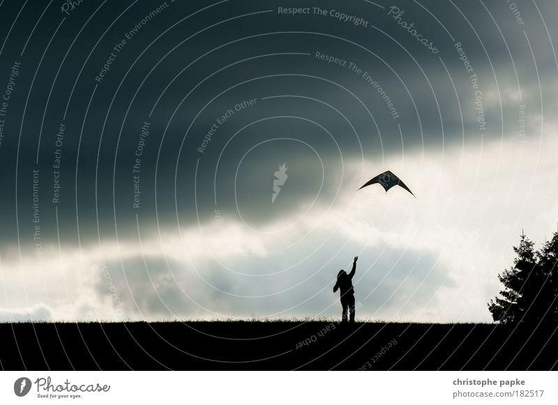 Herbstvergnügen Mensch Himmel Freude Ferne dunkel Wiese Herbst Park Horizont Wind Freizeit & Hobby fliegen Elektrizität bedrohlich Unendlichkeit Sturm
