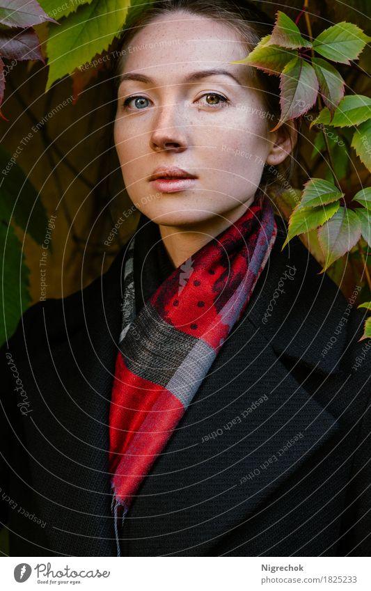 Schönes Mädchen im schwarzen Mantel und im roten Schal im Freien Mensch Frau Natur Jugendliche Farbe grün schön Blatt 18-30 Jahre Gesicht Erwachsene Herbst