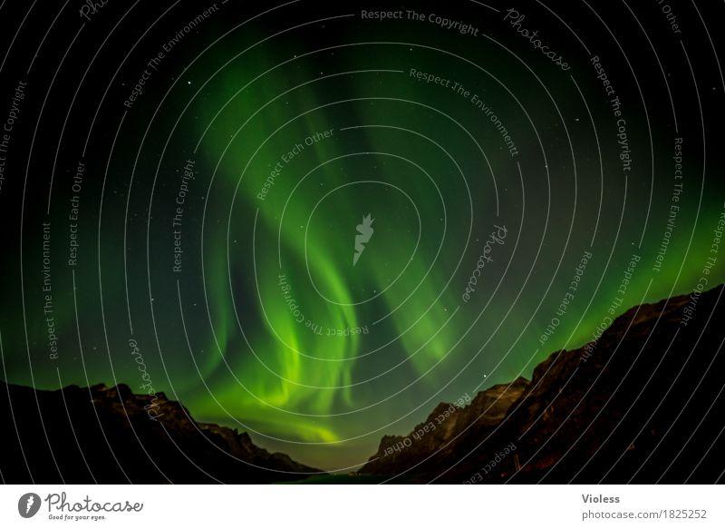 northern lights I Natur Himmel Wolken Nachthimmel Horizont Herbst Nordlicht Fjord Bewegung außergewöhnlich Unendlichkeit demütig geheimnisvoll Surrealismus