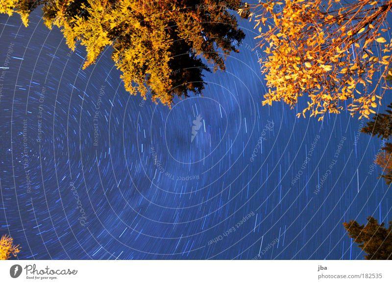 aussenseiter-Zentrum Natur Himmel Baum blau Ferien & Urlaub & Reisen Blatt gelb Erholung Herbst Berge u. Gebirge Bewegung Freiheit Holz träumen Luft
