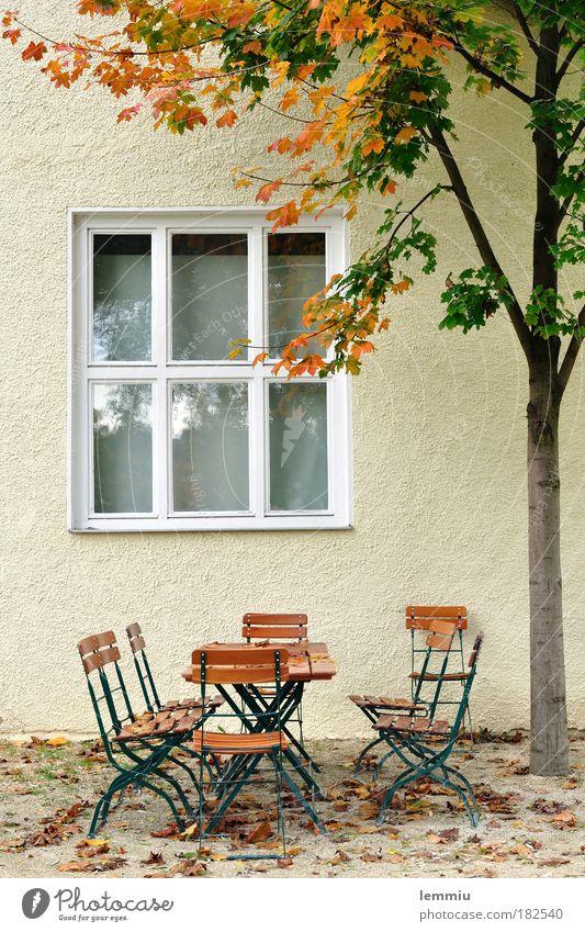 Herbst im Biergarten Farbfoto Außenaufnahme Menschenleer Tag Garten Natur Baum Grünpflanze Haus Mauer Wand Fenster Geborgenheit Gastfreundschaft ruhig
