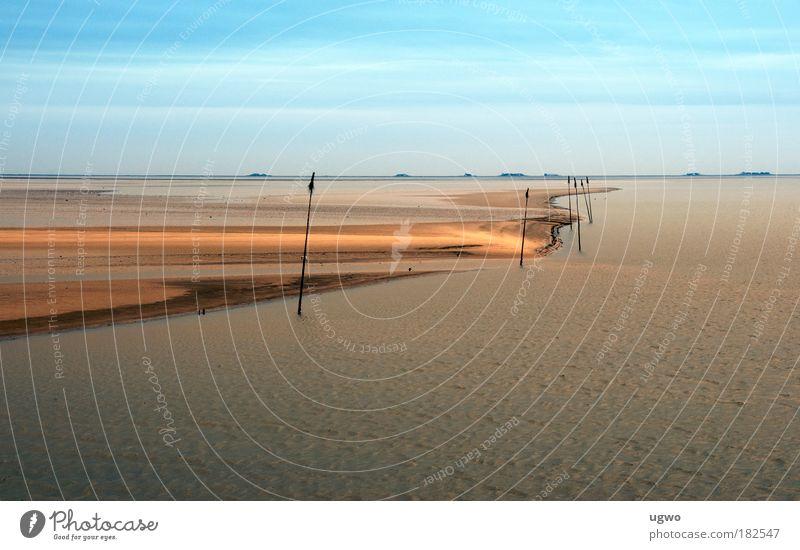 Wasserleere Natur schön Ferne Stil Stimmung nass Klima einfach Nordsee entdecken Schönes Wetter