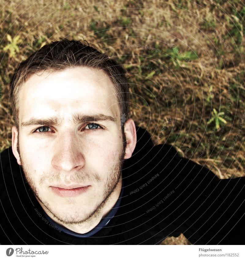 zweihundertstes - stille Freude! Mensch Natur Mann Jugendliche Auge Gesicht Herbst Wiese Landschaft Zufriedenheit Erwachsene maskulin Blick Umwelt Coolness
